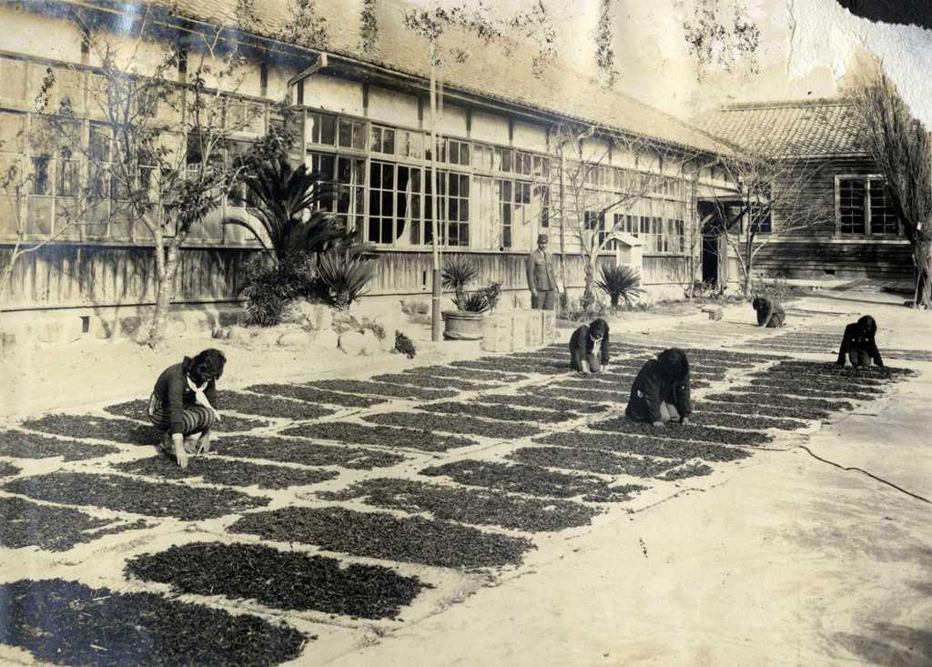 神守小学校の歴史写真 校庭でのイナゴ乾燥の風景